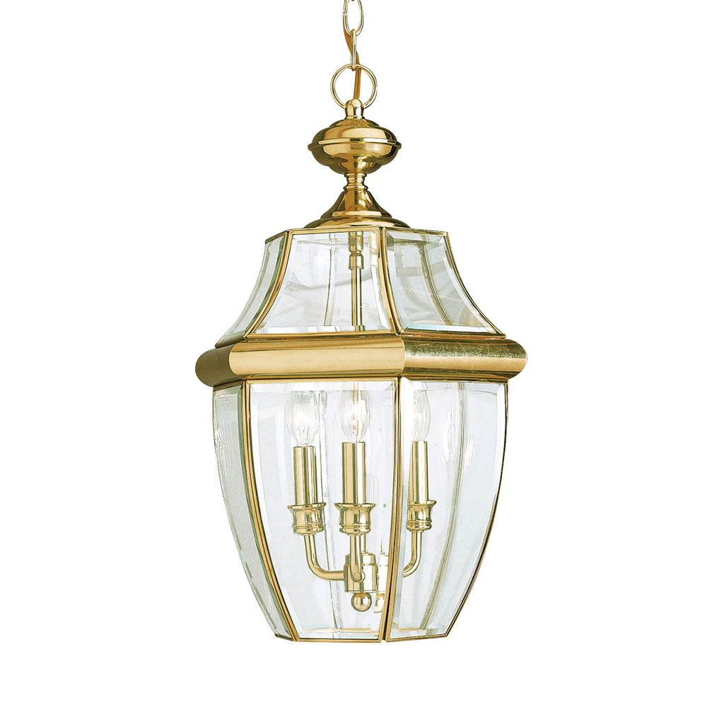 Sea Gull Lighting 6039 02 Three Light Outdoor Pendant